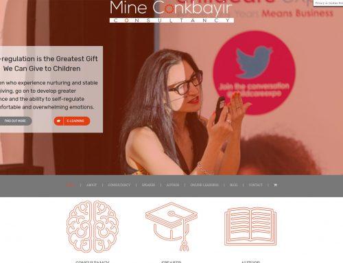 Mine Conkbayir Consultancy