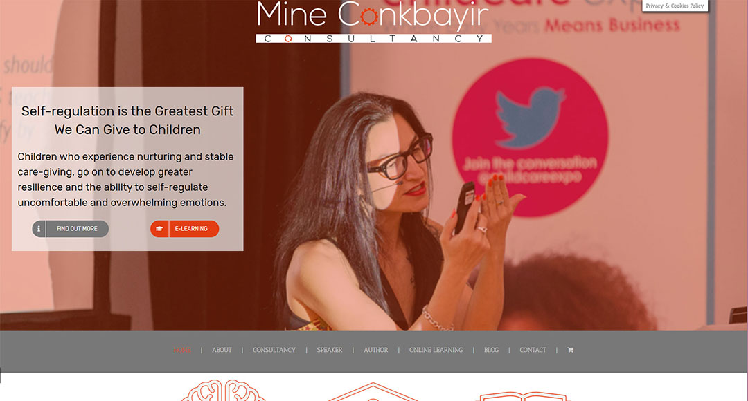 Screenshot of the Mine Conkbayir Consultancy home page designed by Picture Engine