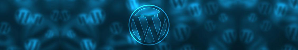 Logos for all the major website builder websites